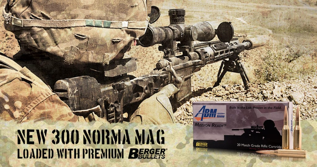 new-300-norma-mag-alt